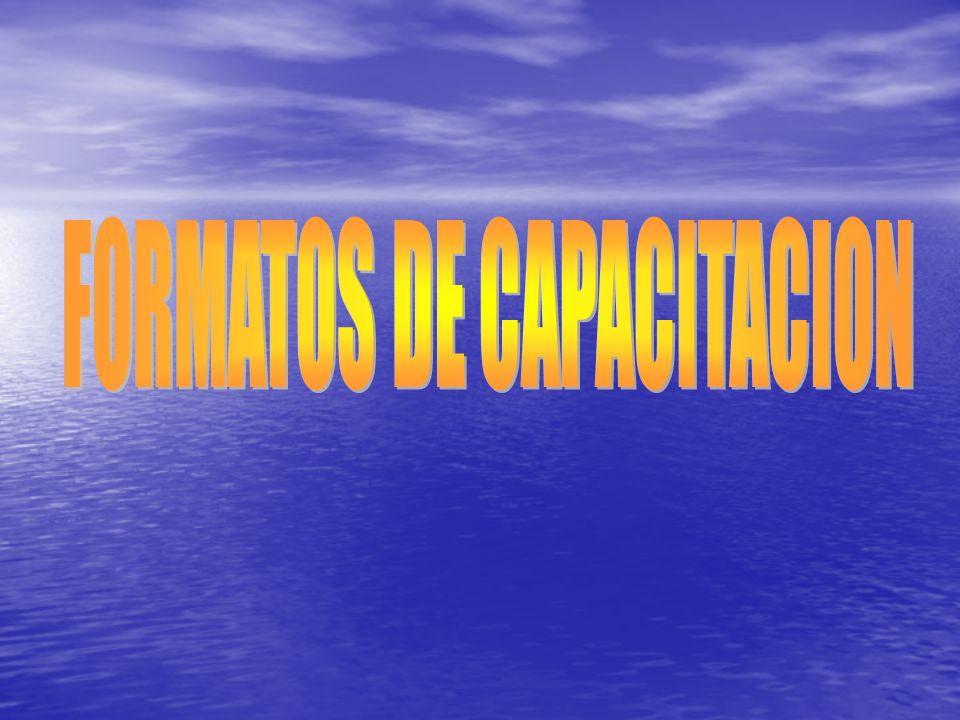 FORMATOS DE CAPACITACION