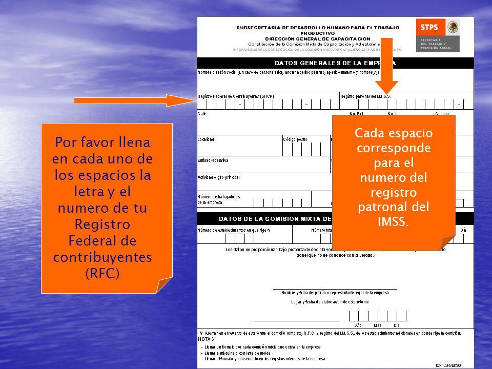 Cada espacio corresponde para el numero del registro patronal del IMSS.
