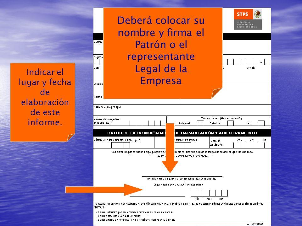 Indicar el lugar y fecha de elaboración de este informe.