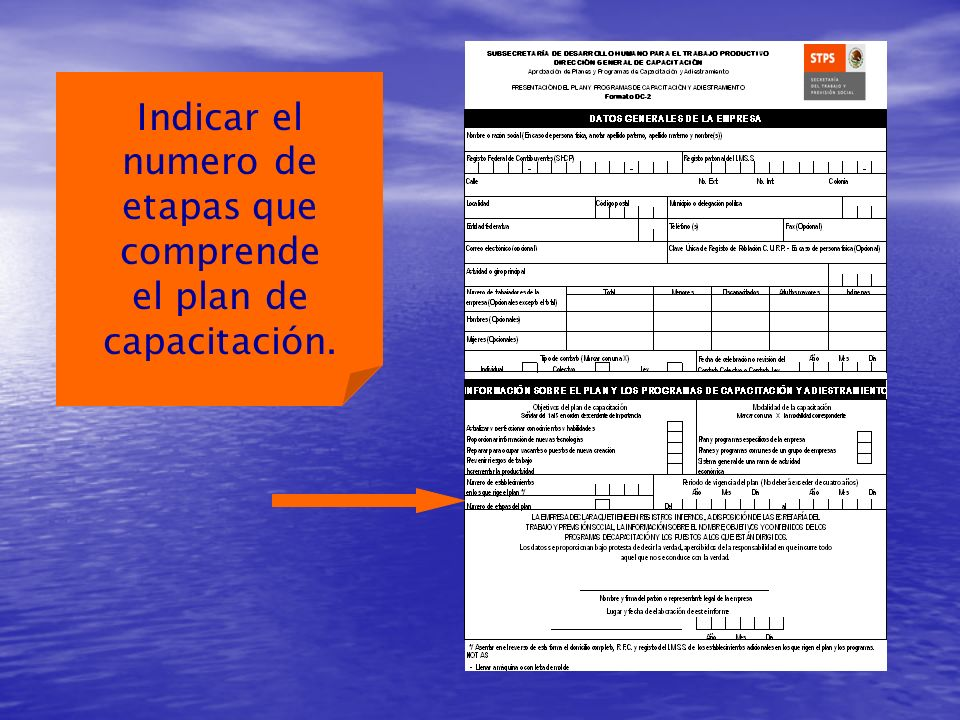 Indicar el numero de etapas que comprende el plan de capacitación.