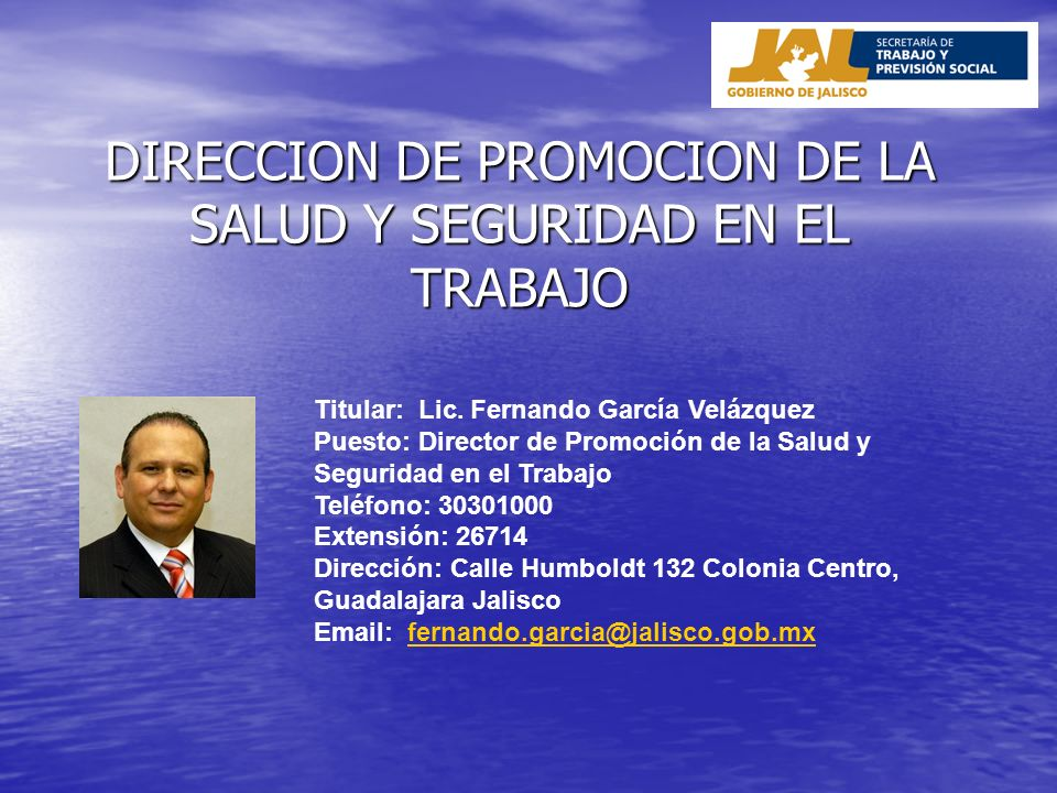 DIRECCION DE PROMOCION DE LA SALUD Y SEGURIDAD EN EL TRABAJO