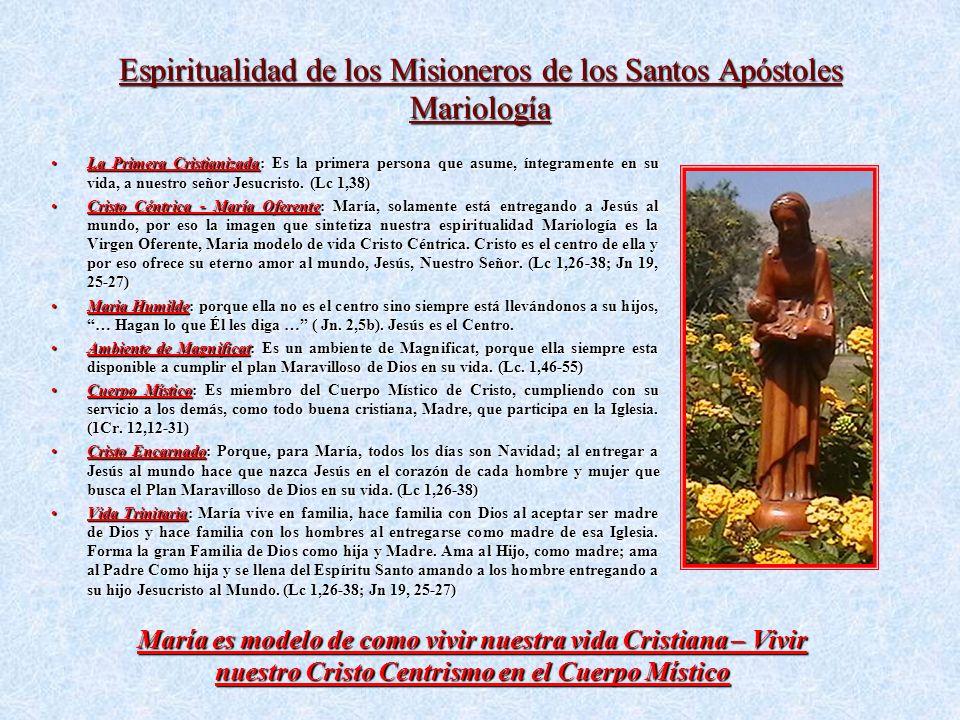 Espiritualidad de los Misioneros de los Santos Apóstoles Mariología