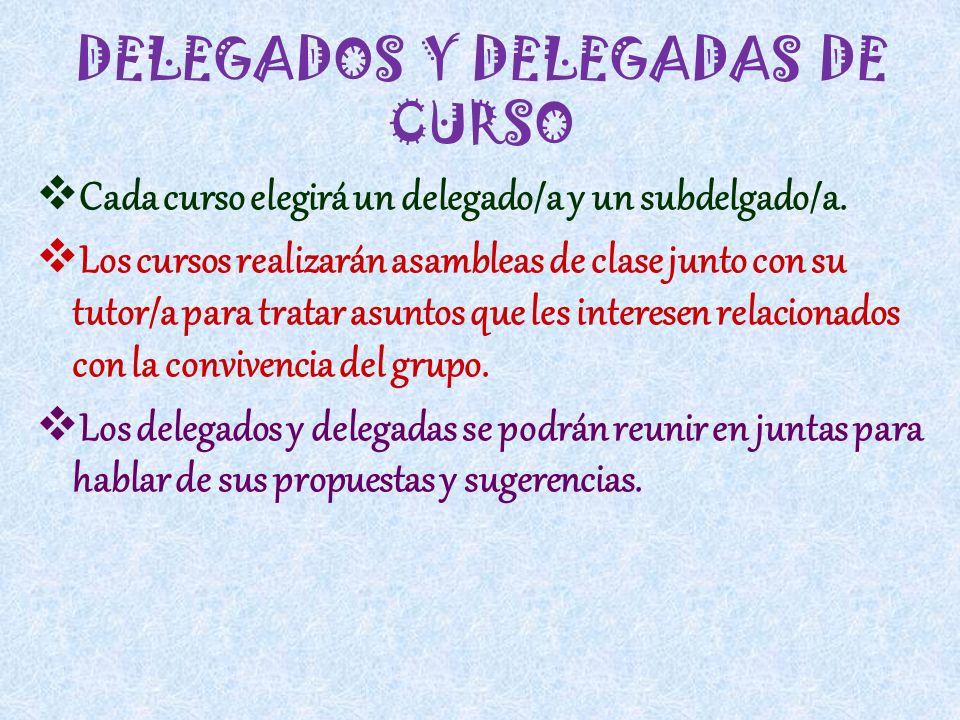 DELEGADOS Y DELEGADAS DE CURSO