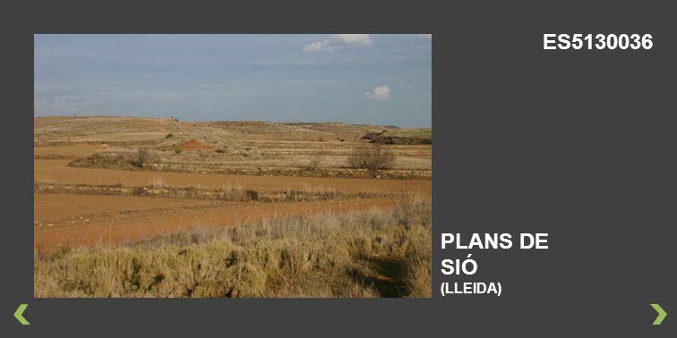 ES5130036 PLANS DE SIÓ (LLEIDA)