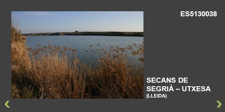 ES5130038 SECANS DE SEGRIÀ – UTXESA (LLEIDA)