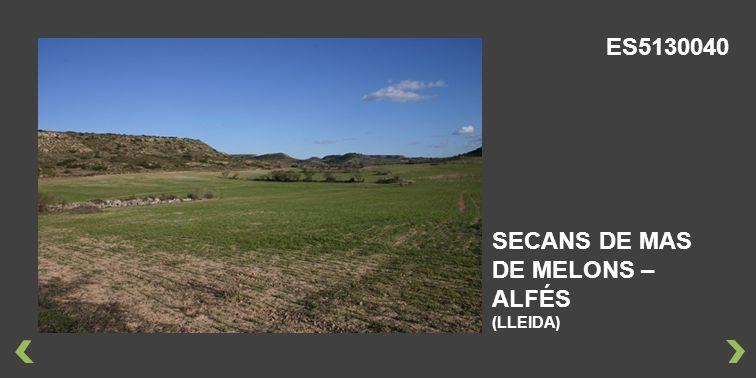 ES5130040 SECANS DE MAS DE MELONS – ALFÉS (LLEIDA)