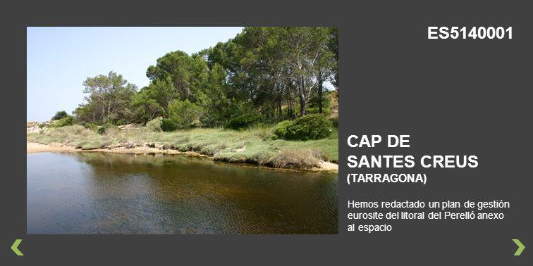 ES5140001 CAP DE SANTES CREUS (TARRAGONA)