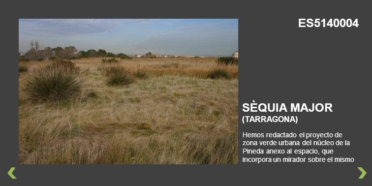 ES5140004 SÈQUIA MAJOR (TARRAGONA)