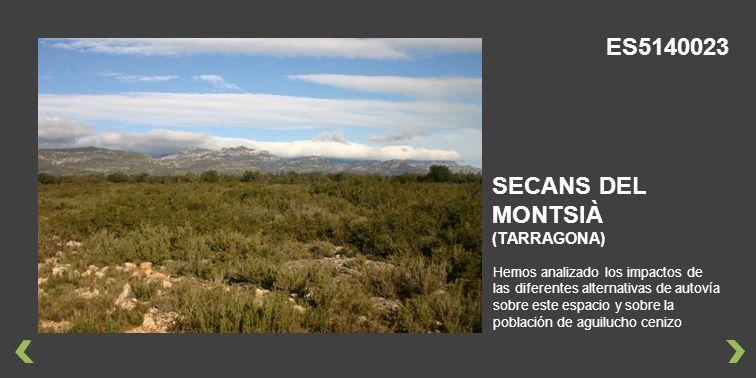 ES5140023 SECANS DEL MONTSIÀ (TARRAGONA)