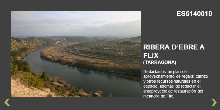 ES5140010 RIBERA D'EBRE A FLIX (TARRAGONA)