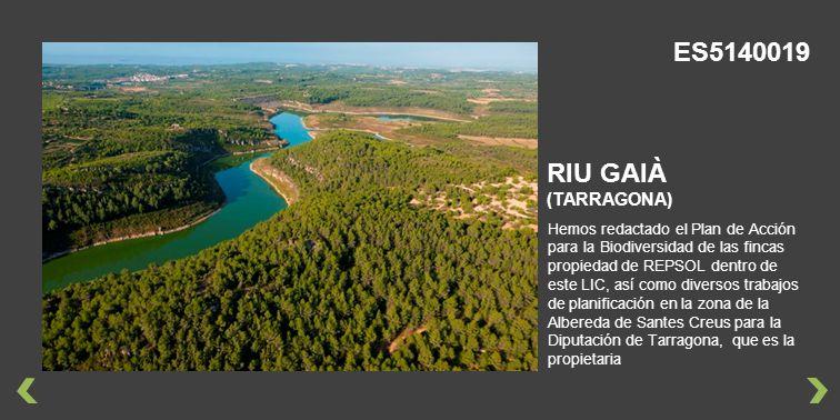 ES5140019 RIU GAIÀ (TARRAGONA)
