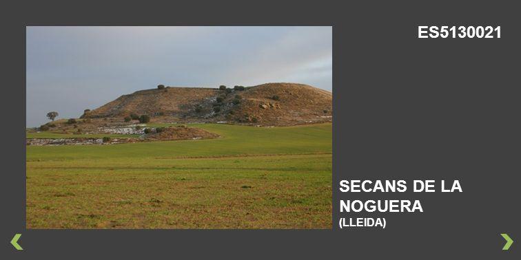 ES5130021 SECANS DE LA NOGUERA (LLEIDA)