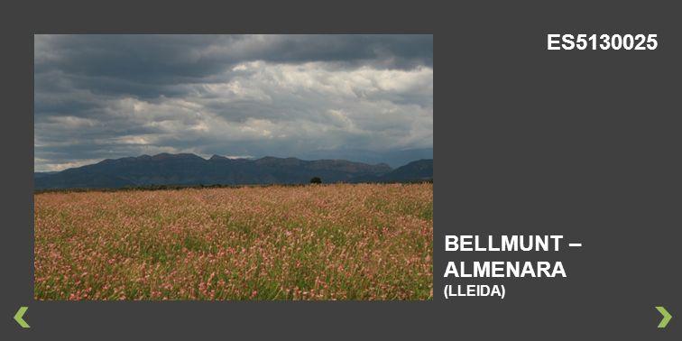 ES5130025 BELLMUNT – ALMENARA (LLEIDA)
