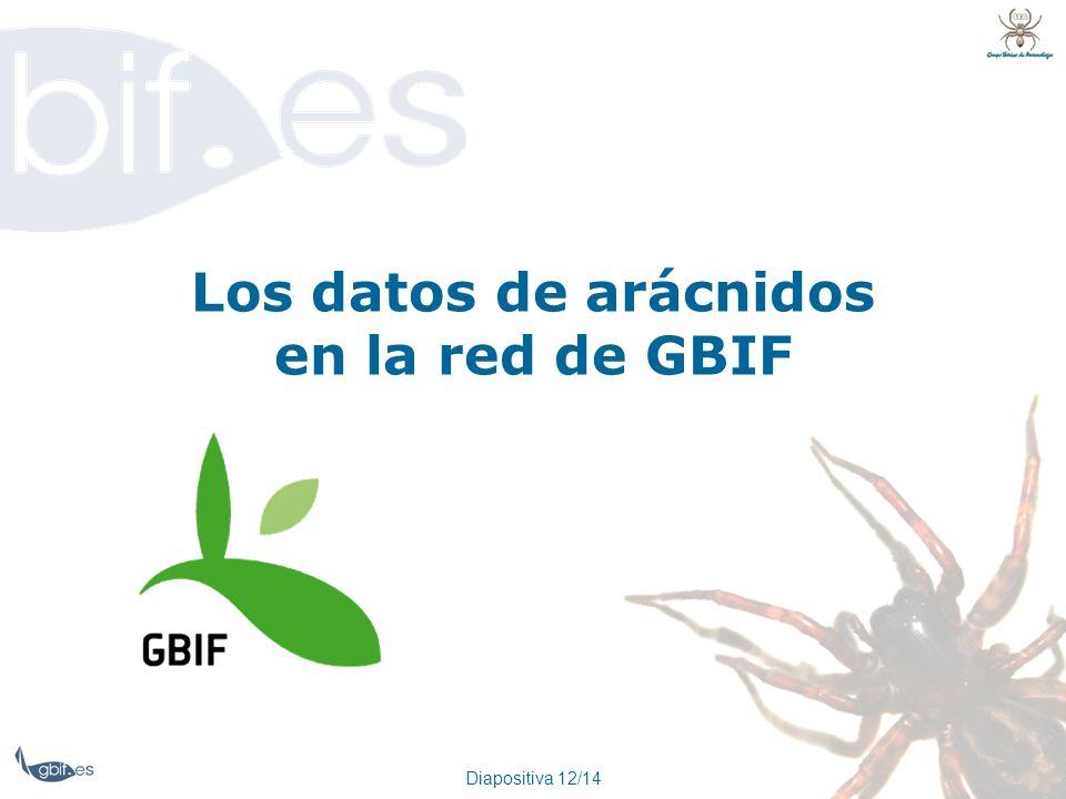 Los datos de arácnidos en la red de GBIF