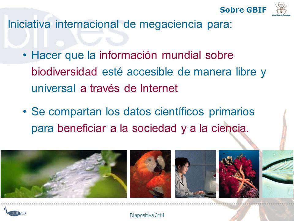 Iniciativa internacional de megaciencia para:
