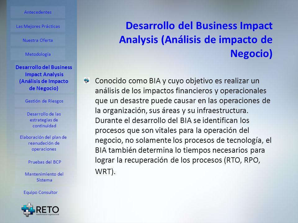 Desarrollo del Business