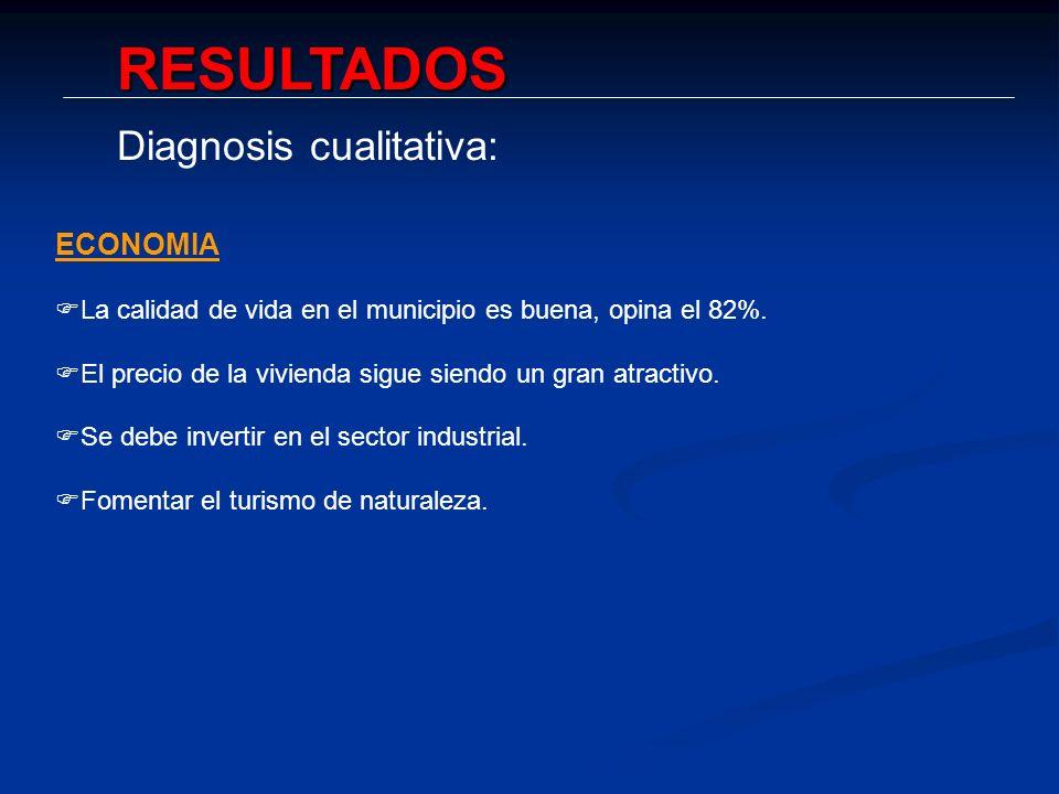 RESULTADOS Diagnosis cualitativa: ECONOMIA