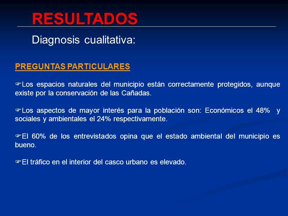 RESULTADOS Diagnosis cualitativa: PREGUNTAS PARTICULARES