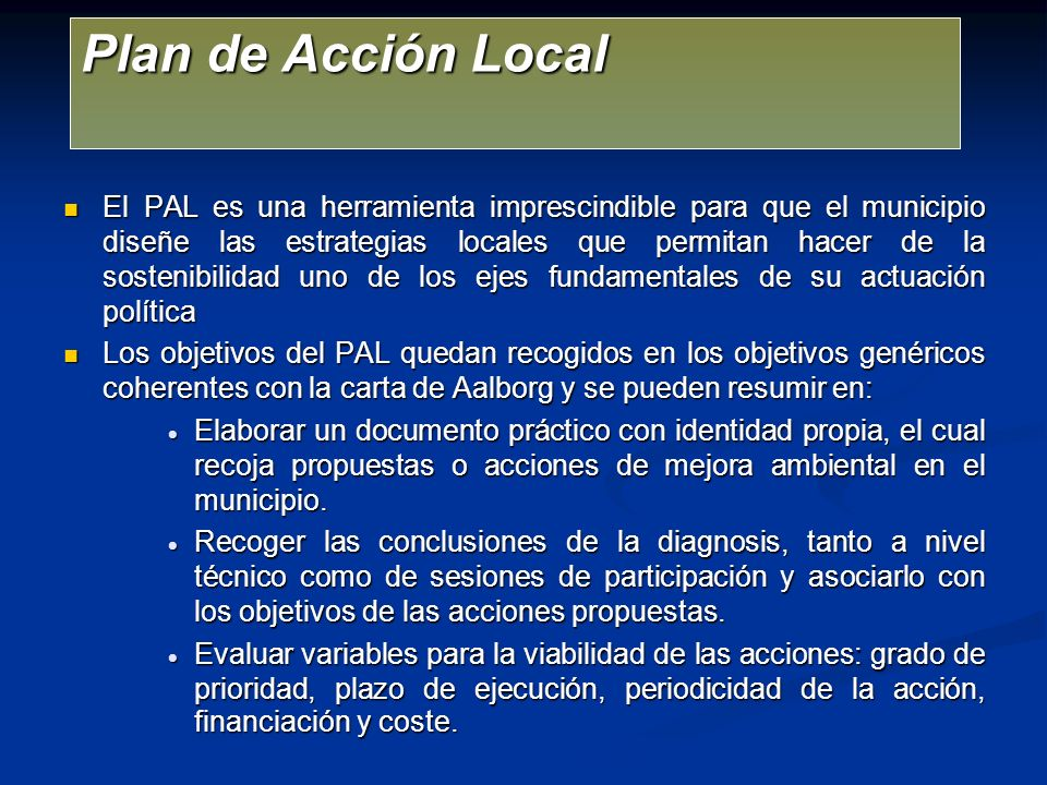 Plan de Acción Local