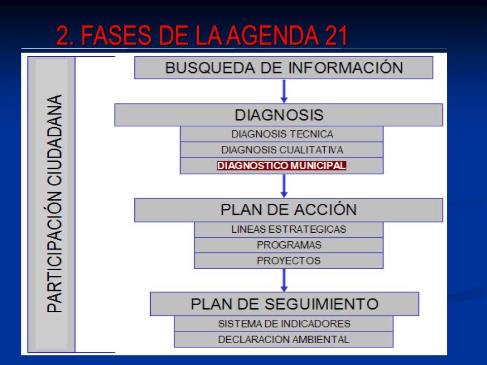2. FASES DE LA AGENDA 21