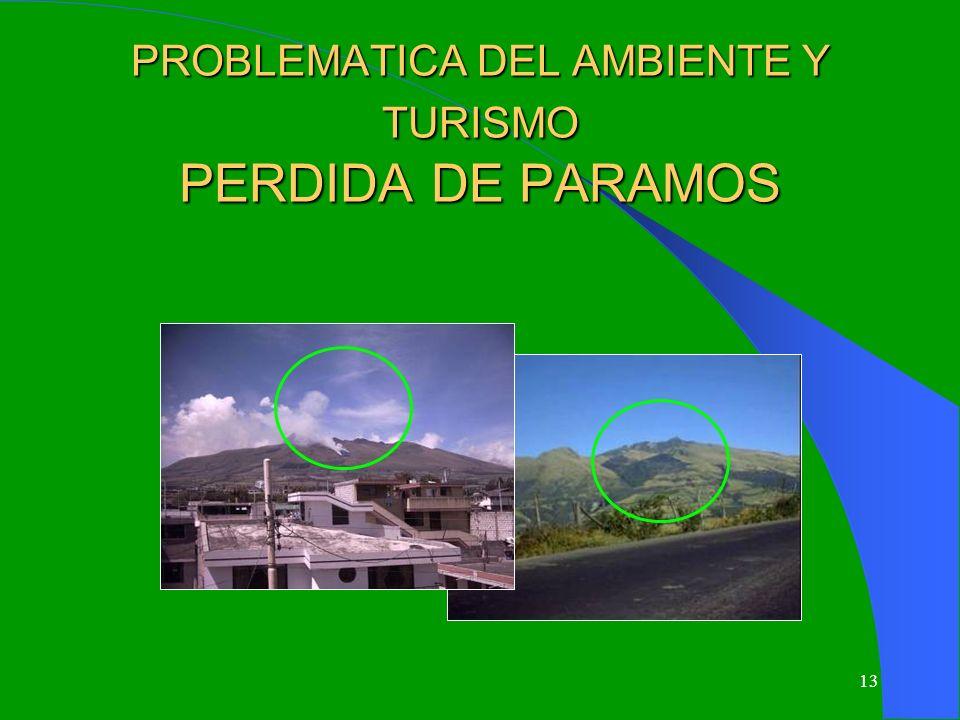 PROBLEMATICA DEL AMBIENTE Y TURISMO PERDIDA DE PARAMOS