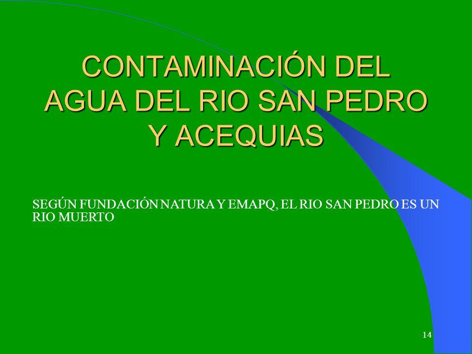 CONTAMINACIÓN DEL AGUA DEL RIO SAN PEDRO Y ACEQUIAS