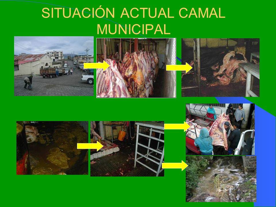 SITUACIÓN ACTUAL CAMAL MUNICIPAL