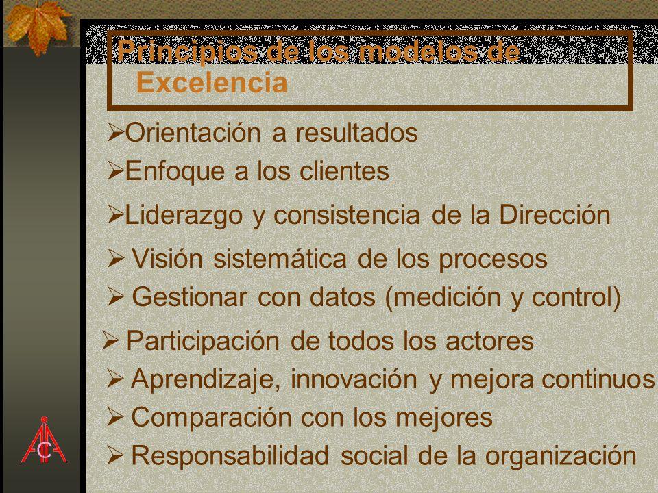 Principios de los modelos de Excelencia