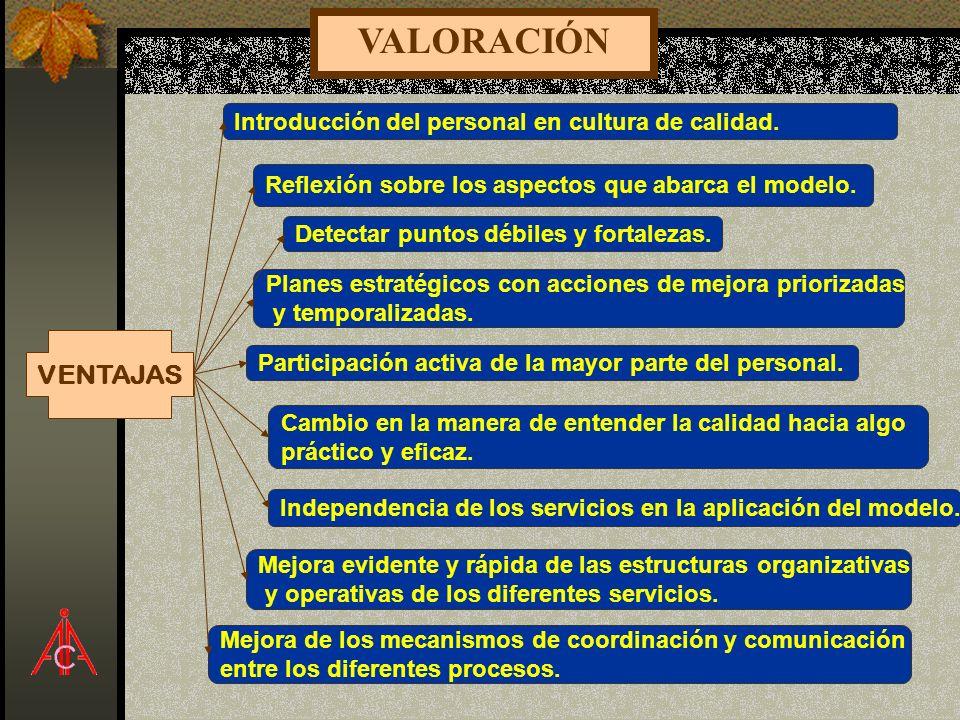 VALORACIÓN VENTAJAS Introducción del personal en cultura de calidad.