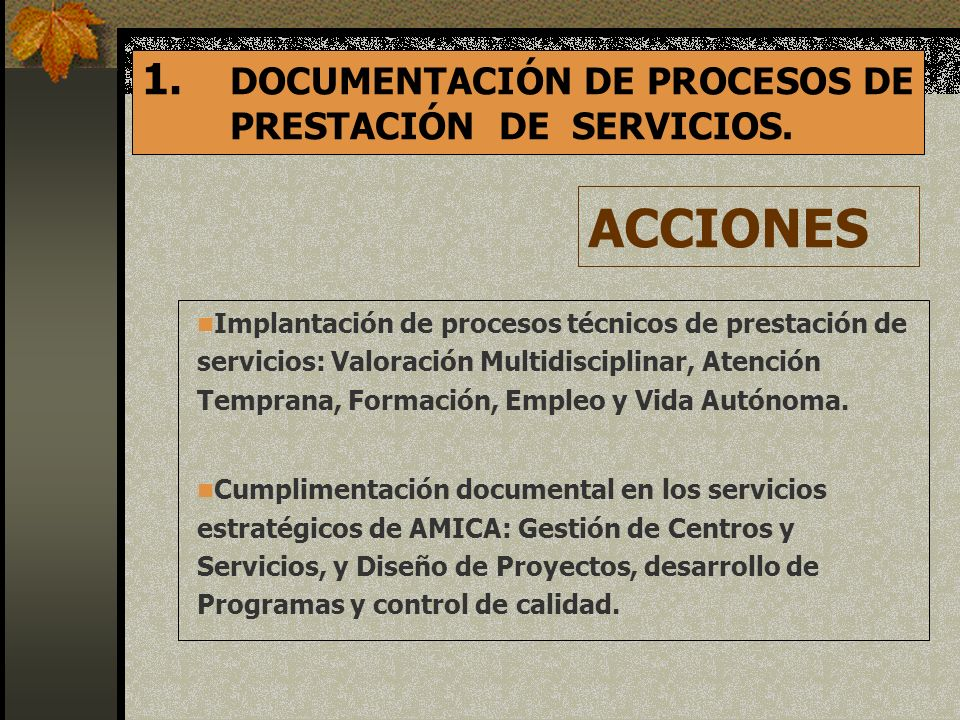 ACCIONES DOCUMENTACIÓN DE PROCESOS DE PRESTACIÓN DE SERVICIOS.
