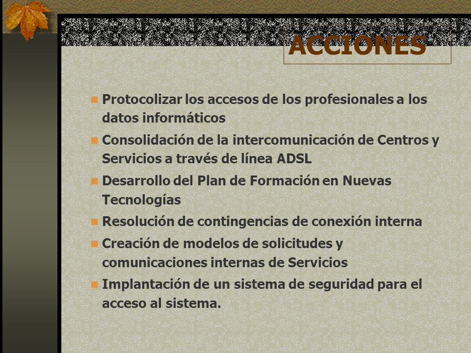 ACCIONES Protocolizar los accesos de los profesionales a los datos informáticos.