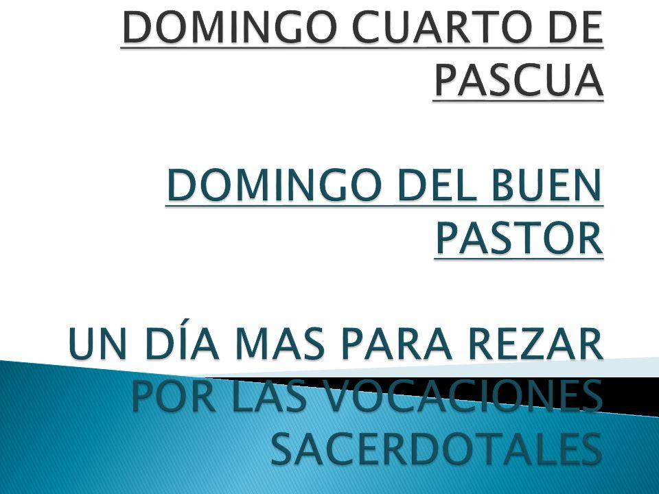 DOMINGO CUARTO DE PASCUA DOMINGO DEL BUEN PASTOR UN DÍA MAS PARA REZAR POR LAS VOCACIONES SACERDOTALES