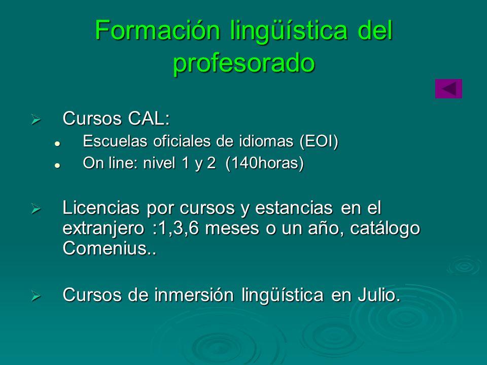 Formación lingüística del profesorado