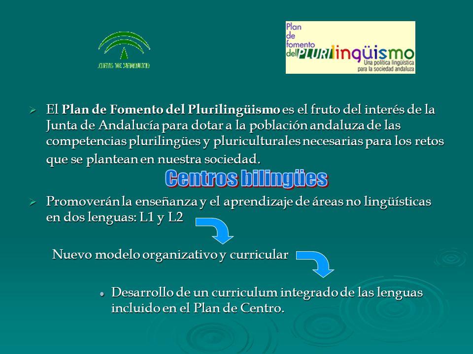 El Plan de Fomento del Plurilingüismo es el fruto del interés de la Junta de Andalucía para dotar a la población andaluza de las competencias plurilingües y pluriculturales necesarias para los retos que se plantean en nuestra sociedad.