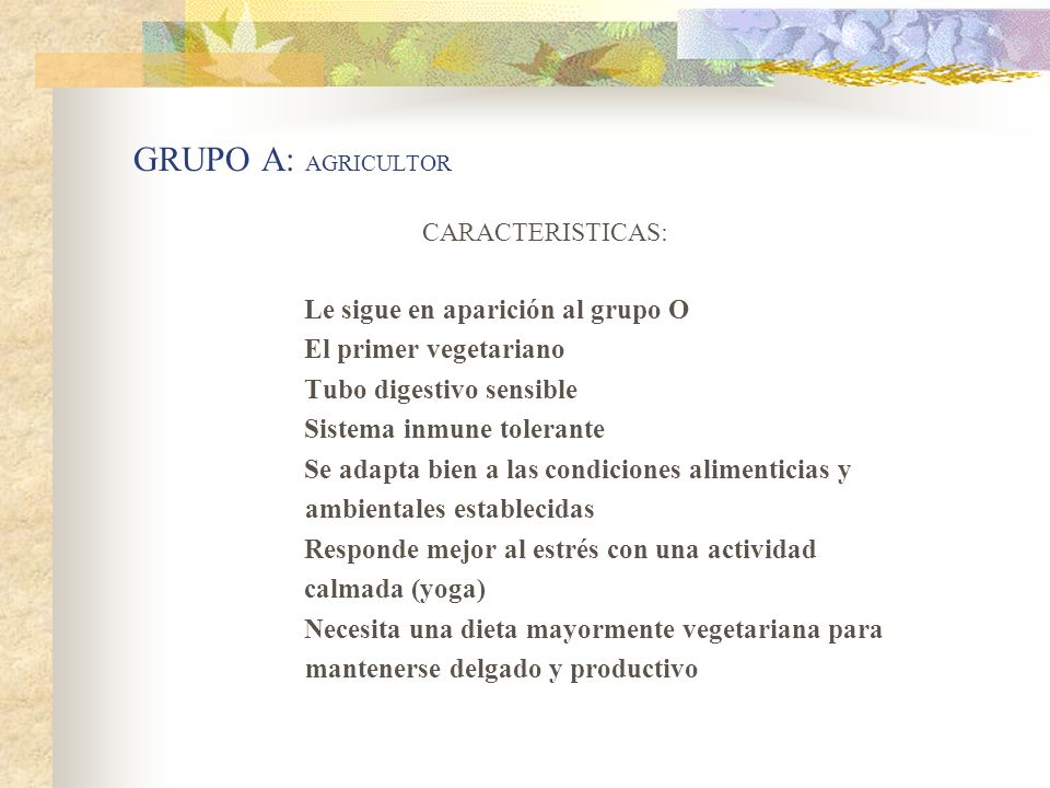GRUPO A: AGRICULTOR El primer vegetariano Tubo digestivo sensible