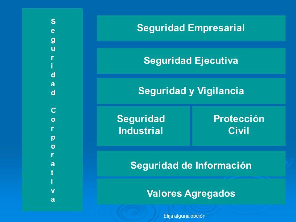 Seguridad Empresarial Seguridad y Vigilancia Seguridad de Información