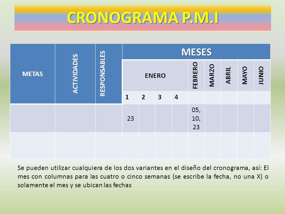 CRONOGRAMA P.M.I MESES METAS ACTIVIDADES RESPONSABLES ENERO FEBRERO
