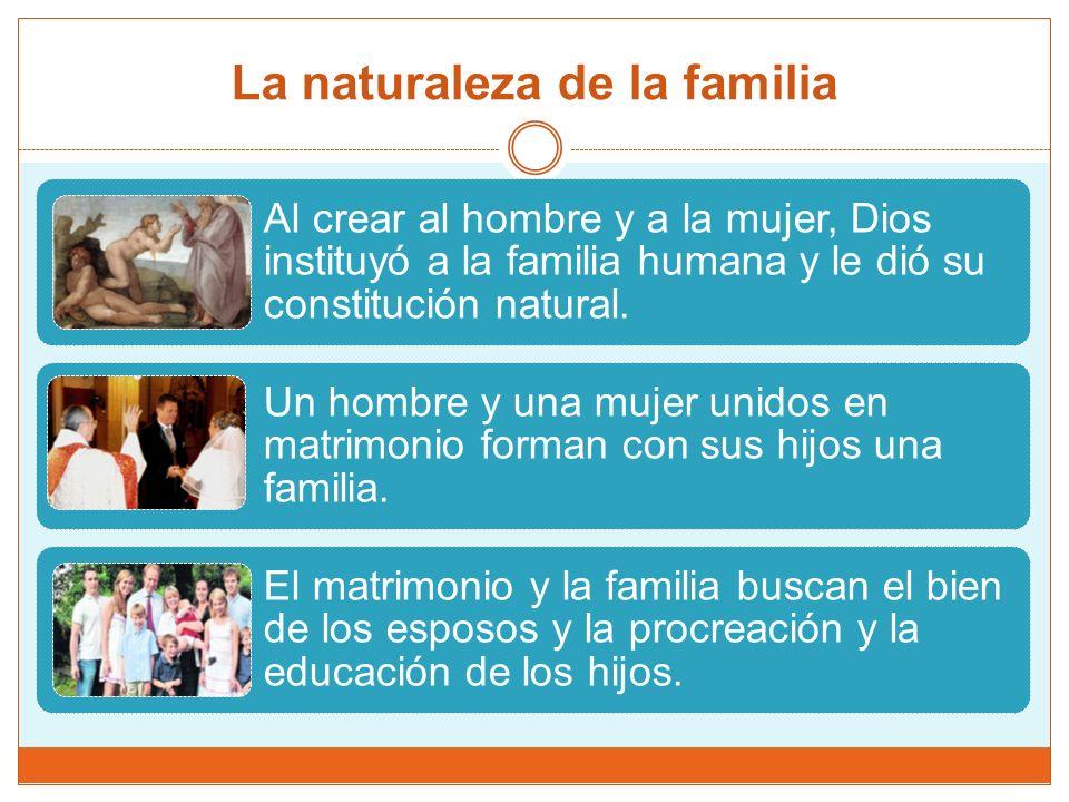 La naturaleza de la familia