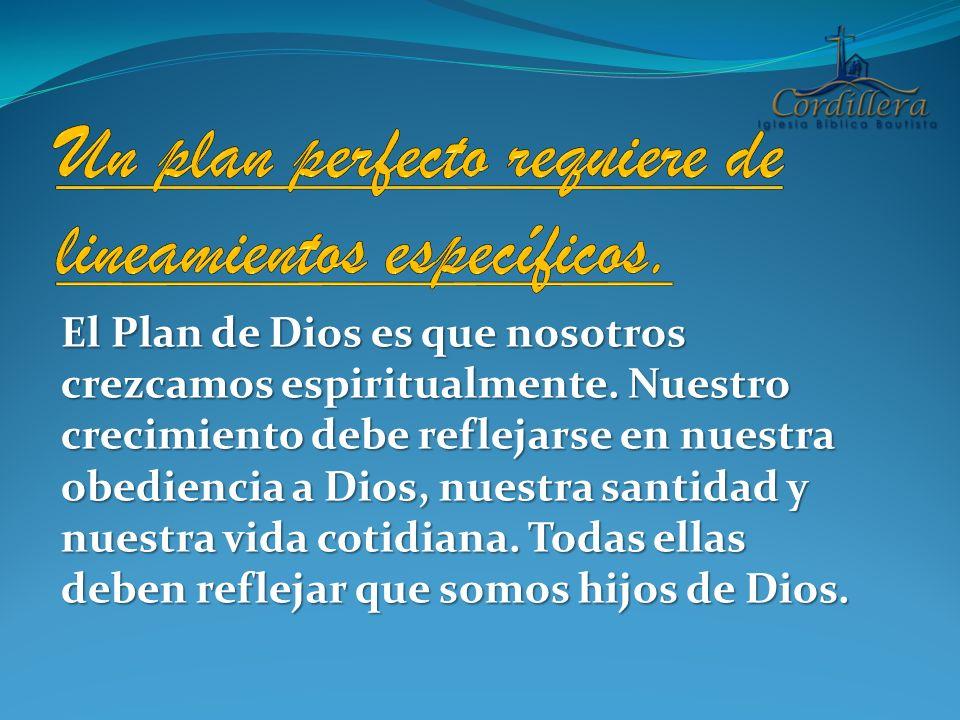 Un plan perfecto requiere de lineamientos específicos.