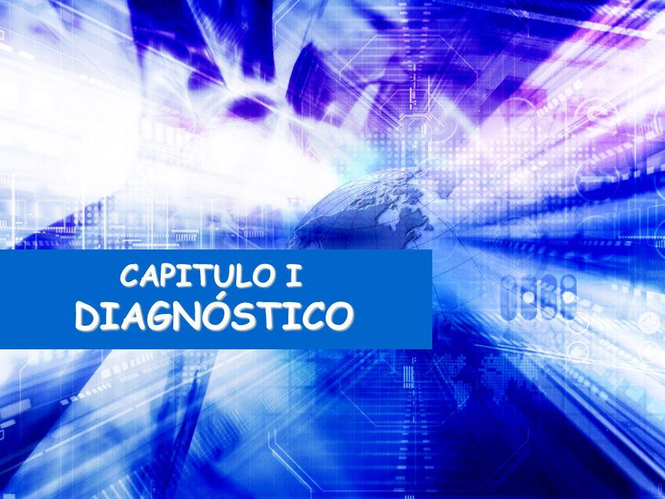 CAPITULO I DIAGNÓSTICO