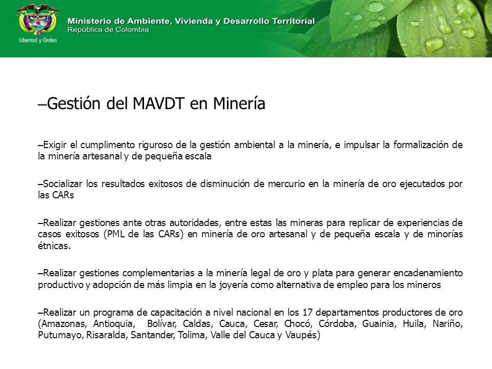Gestión del MAVDT en Minería