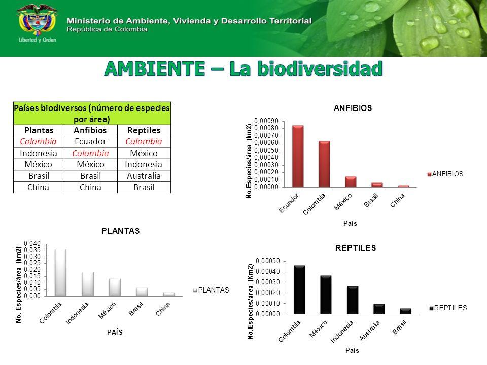 AMBIENTE – La biodiversidad