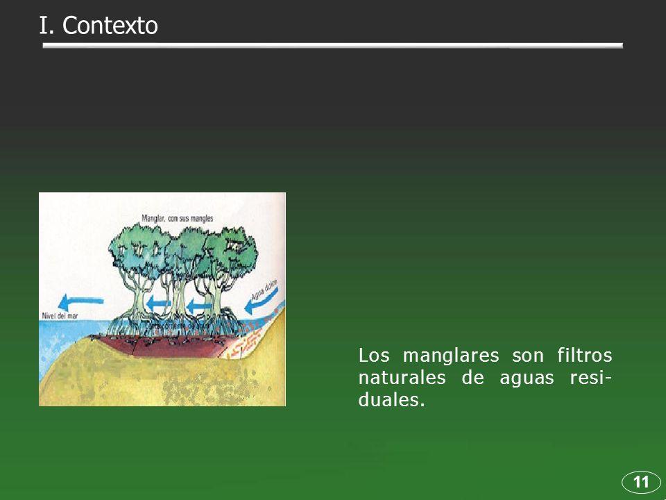 I. Contexto Los manglares son filtros naturales de aguas resi-duales.