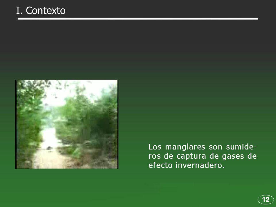 I. Contexto Los manglares son sumide-ros de captura de gases de efecto invernadero. 12