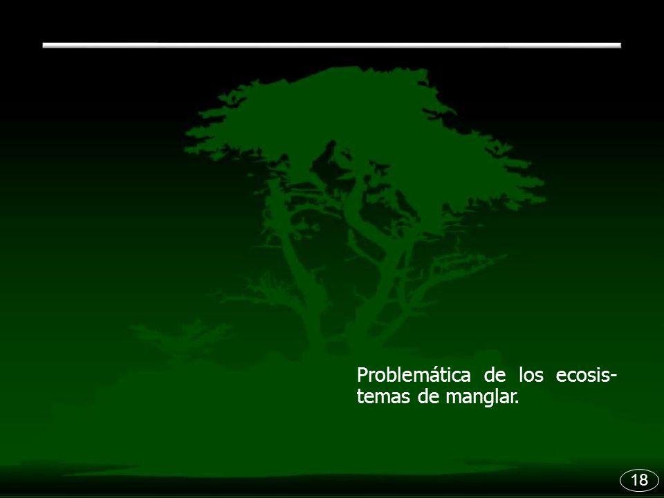 Problemática de los ecosis- temas de manglar.