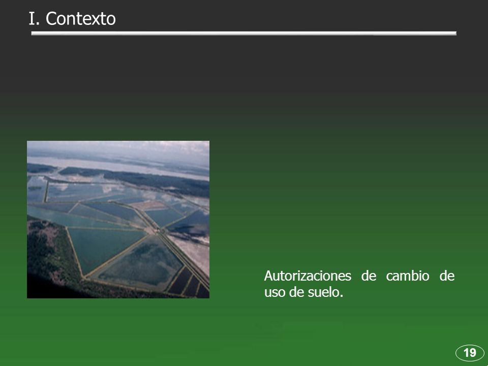 I. Contexto Autorizaciones de cambio de uso de suelo. 19