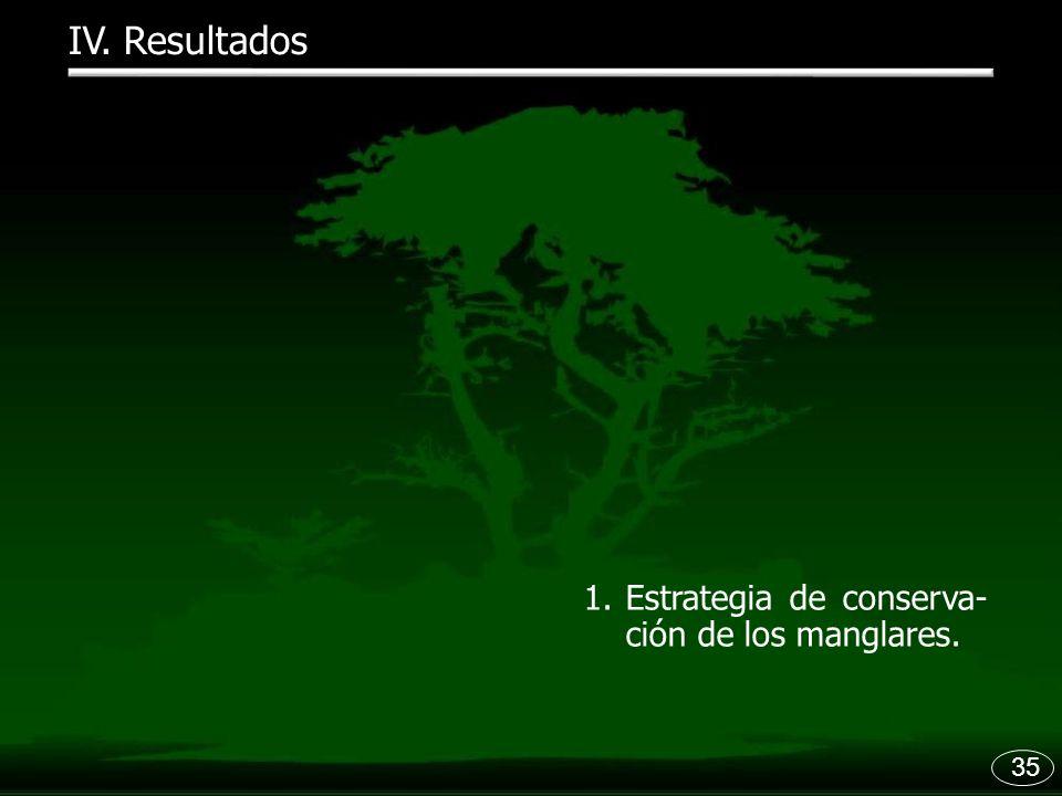 IV. Resultados Estrategia de conserva-ción de los manglares. 35