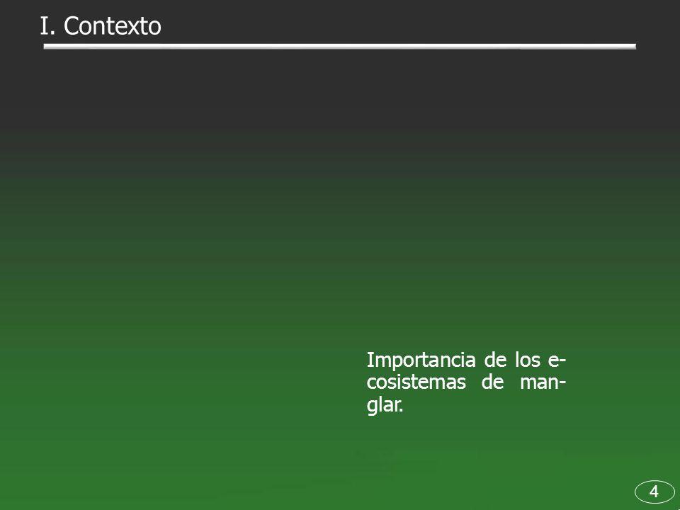 I. Contexto Importancia de los e- cosistemas de man- glar. 4