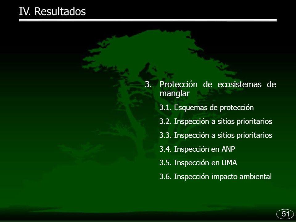 IV. Resultados Protección de ecosistemas de manglar