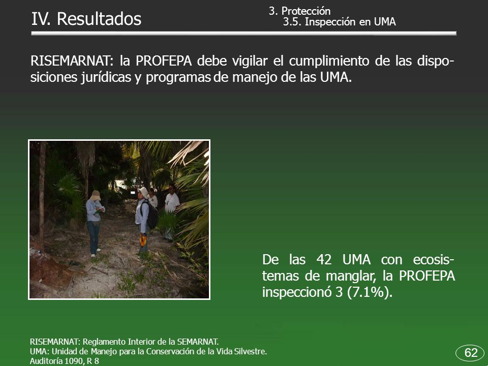 3. Protección IV. Resultados. 3.5. Inspección en UMA.